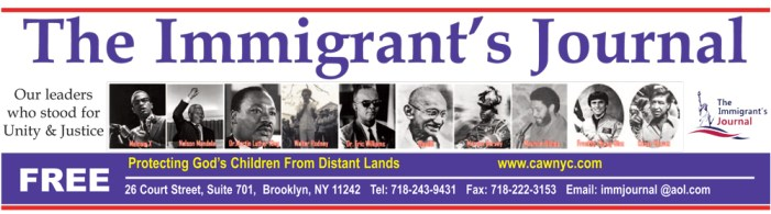 Immigrant's Journal