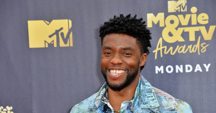 Chadwick Boseman knew his voice had power and used it to challenge Hollywood