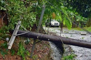 Toppled power pole blocking road. Photo Credit: Horst Michael Vogel