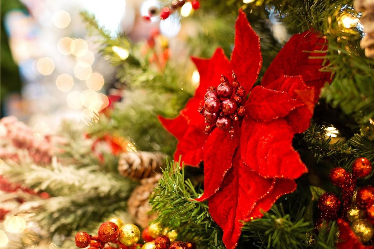 christmas-3823672_1280.jpg