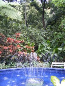 Diamond Botanical Gardens
