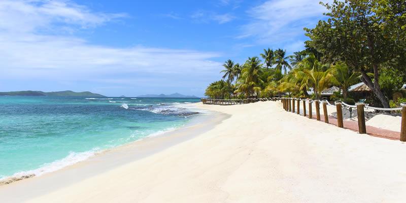 Palm Island 3