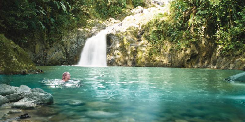 tobago waterfall with Caribbean Warehouse
