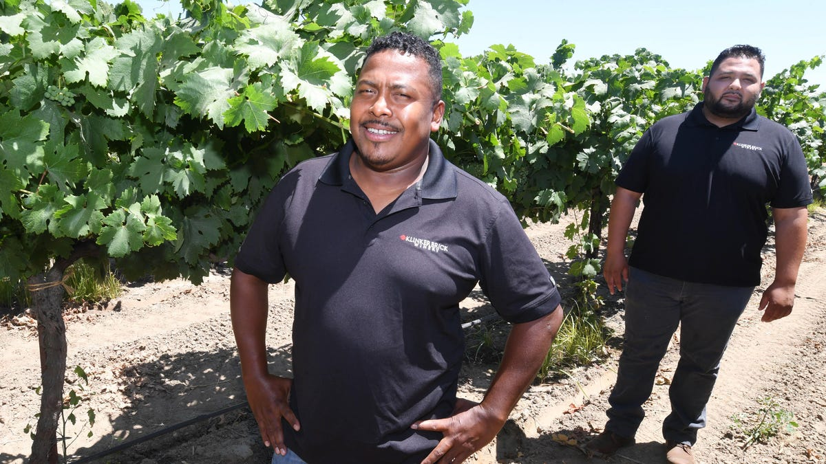 FTV: Wine industry isn't immune from issues of diversity