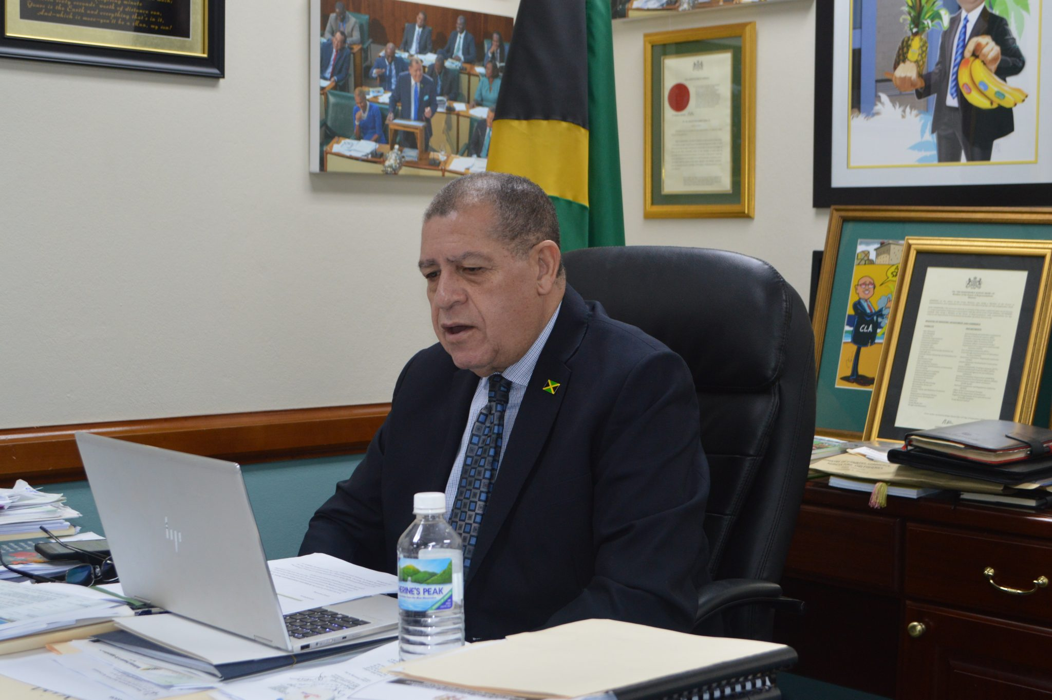 Newly Formed Council Urged To Drive Quality In Jamaica
