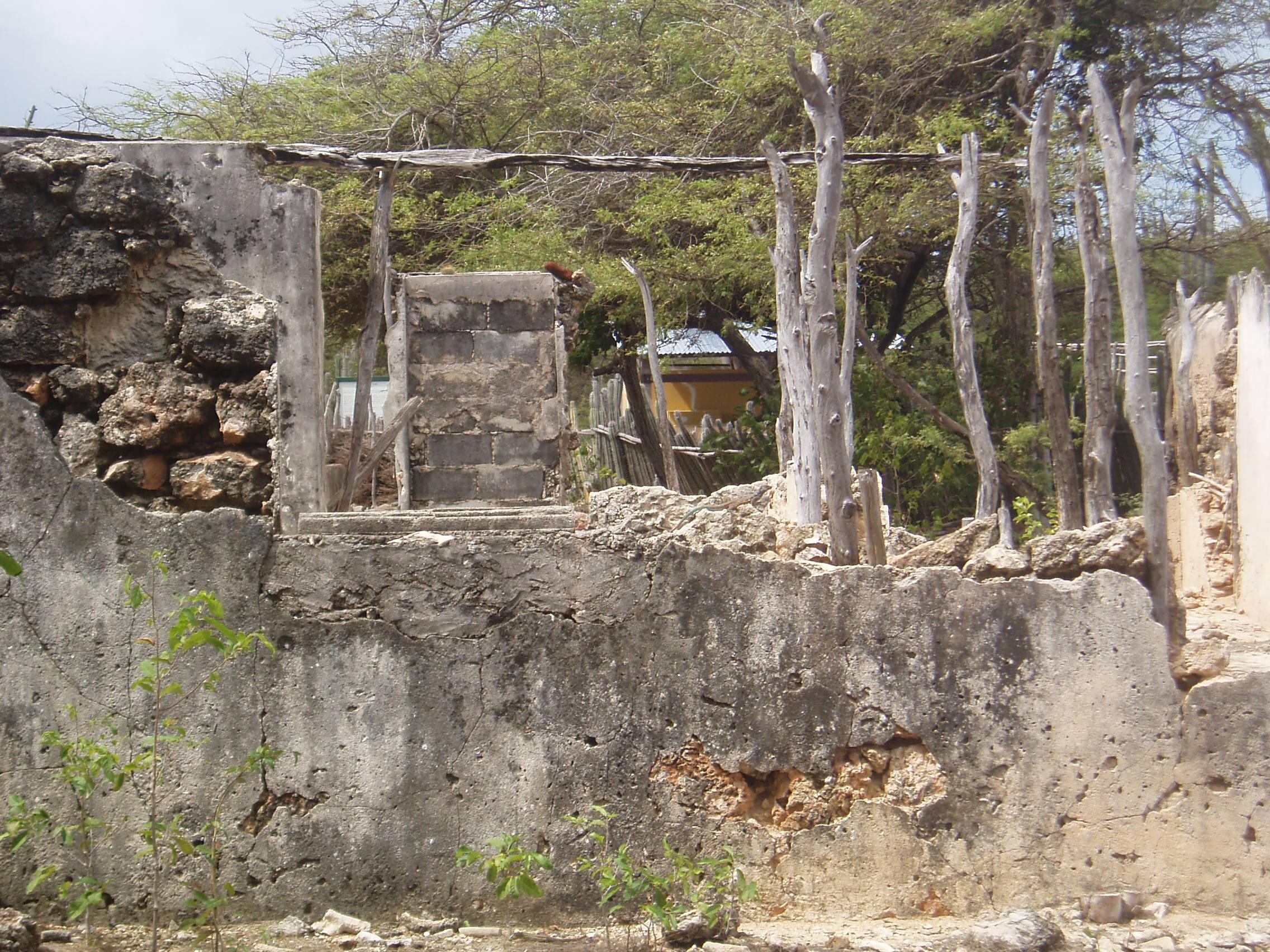 Bonaire Landscape