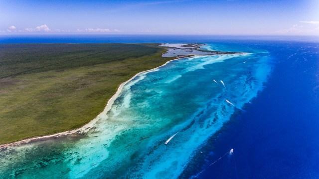 Medidas ambientalistas repercuten negativamente en operadores de servicios náuticos en Cozumel