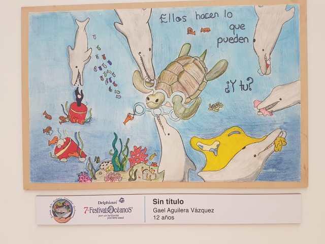 Emiten convocatoria para concurso de dibujo infantil sobre océanos