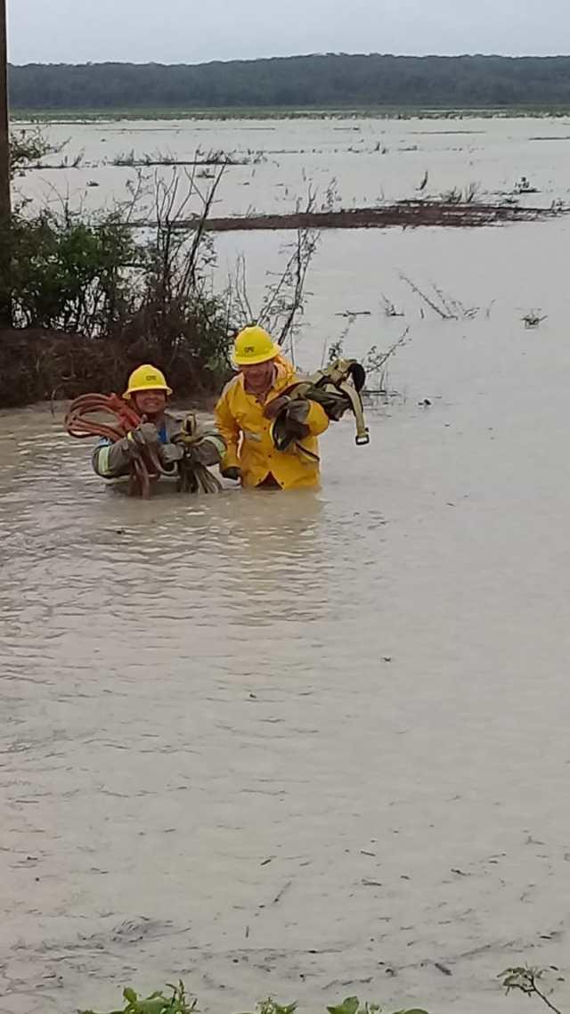 """CFE trabaja para restablecer al 100%  el suministro a los usuarios afectados por la tormenta tropical """"Cristóbal"""""""