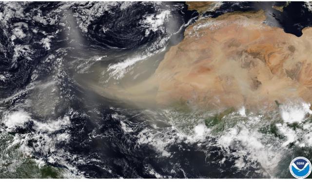Se prevé que polvo del Sahara alcance máxima concentración el jueves o viernes en Península de Yucatán: COEPROC