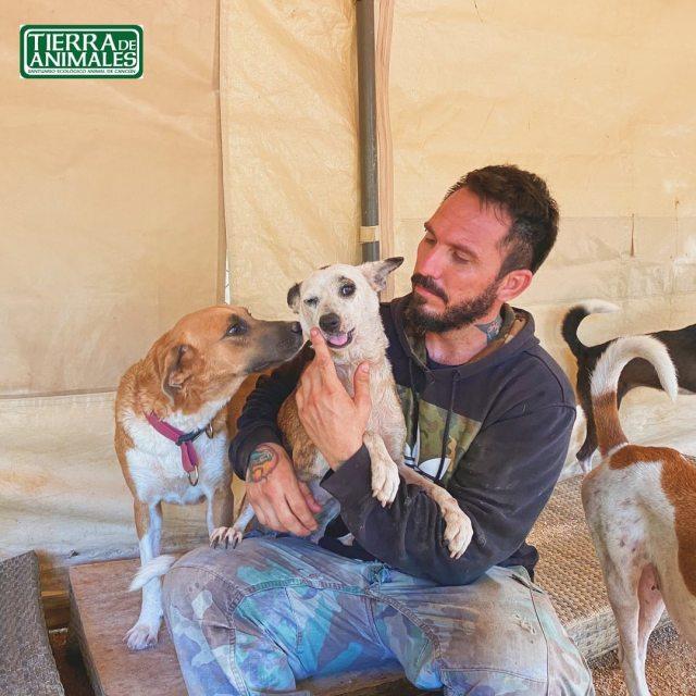 """La historia de Ricardo Pimentel, el fundador de """"Tierra de animales"""",  refugio animal en Qroo @Tierradanimales"""