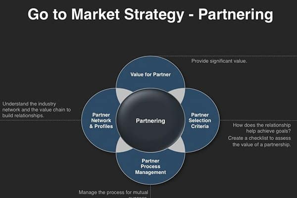 Web Strategy Services