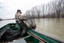 Le pêcheur détient un permis du Ministère des Forêts, de la Faune et des Parcs. Il gère six lignes de pêche le long du littoral.