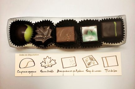 La collection de chocolats forestiers. | Crédit: Maryse Morin