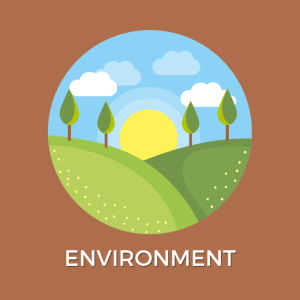 carib-wellness-school-environment