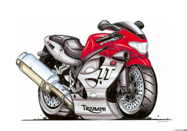 Triumph TT600 Grise