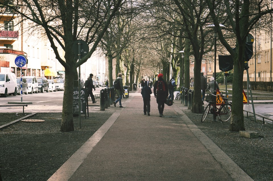 En sti under trærne i Stockholm. Carina Behrens - carinabehrens.com