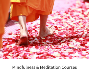 Mindfulness & meditation Courses