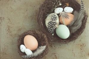 Spring Renewal Rituals