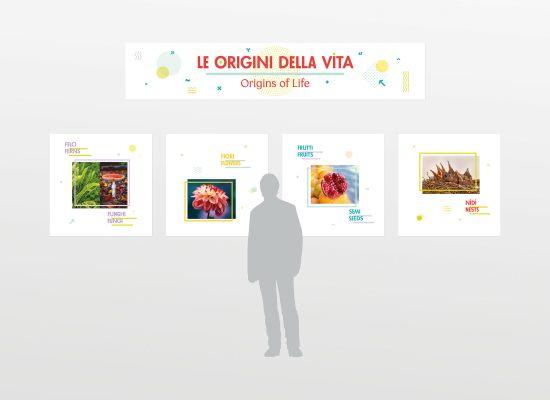 Le Origini della Vita, sala espositiva Museo Storia Naturale di Trieste. Immagine coordinata e progetto di Carin Marzaro
