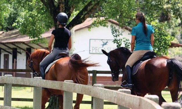 Cavalgadas em Vargem Grande