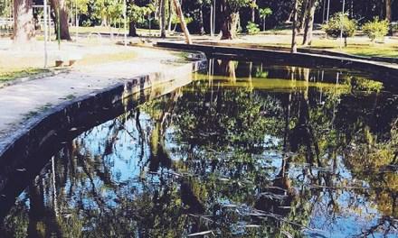 Oásis em Vila Isabel