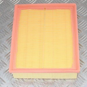 Defender-Discovery Air Filter