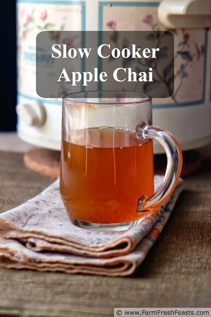 http://www.farmfreshfeasts.com/2014/10/slow-cooker-apple-chai-for-crowd-or.html