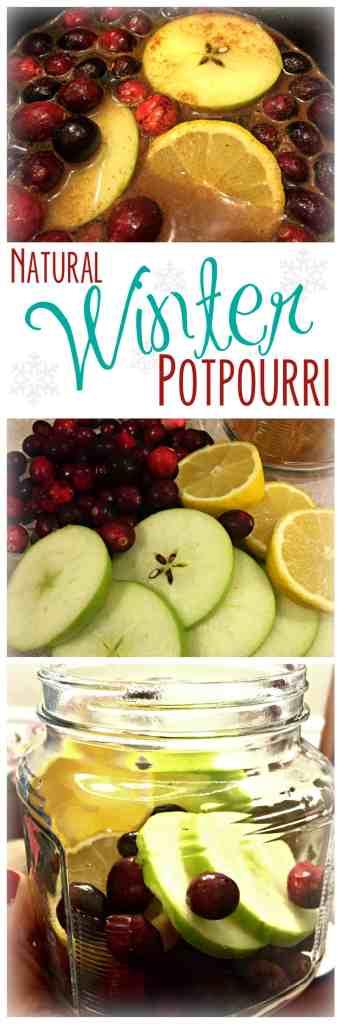 Natural Winter Potpourri
