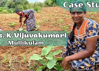 Case study of Mrs.K.Vijuvakumari