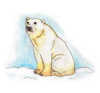 Xmas watercolours - Polar Bear