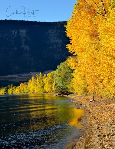Fall Colours on Wood Lake, Oyama, BC