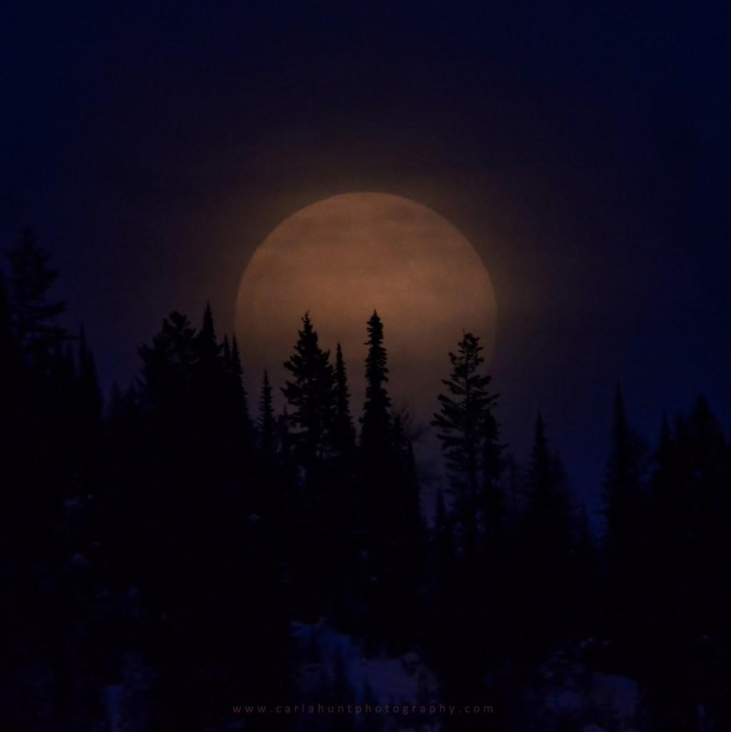 Full Moon, January 20, 2019, Vernon, BC