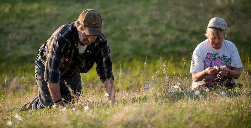 Lifestyle-Photography-Alberta-Nature-Photographer