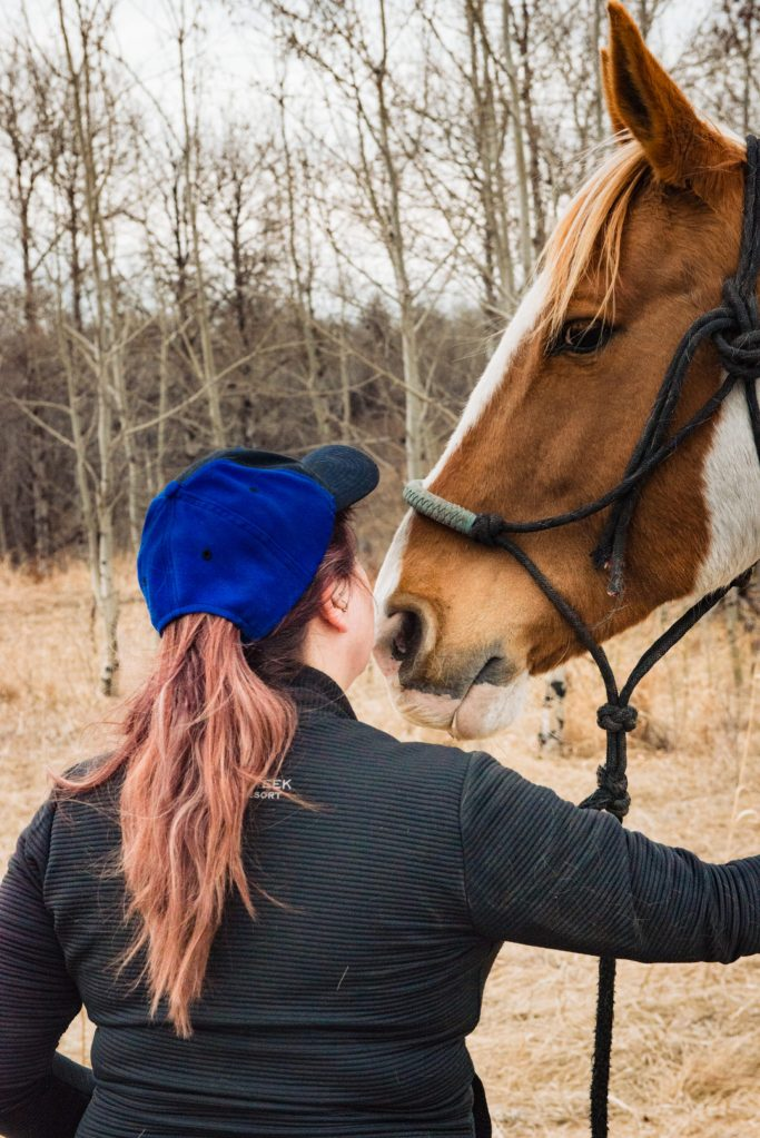 Chicka the horse, blowing on my face finding peace with horses carla lehman photography equine photographer