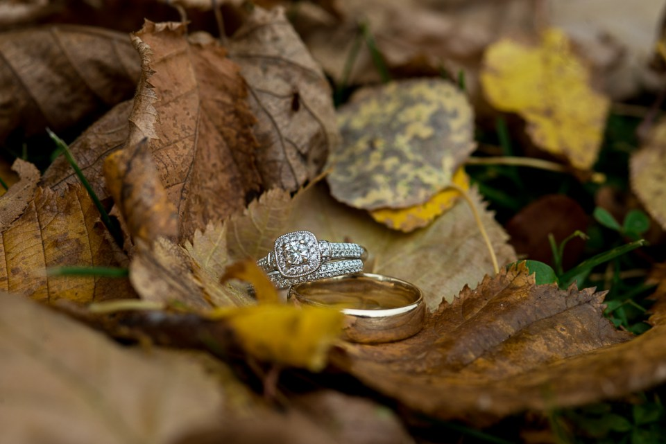 Wedding rings in a lovely autumn leaf nest