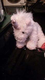 unicorn-suitcase