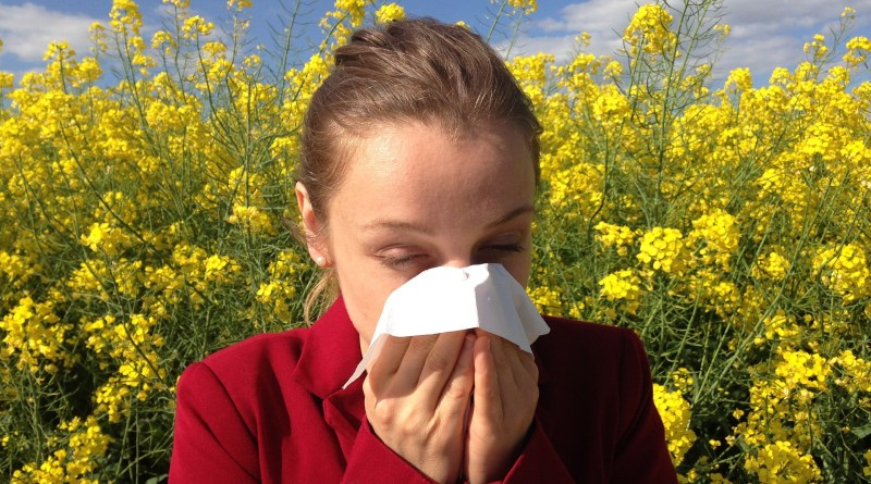 alergia o catarro