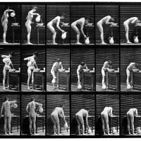 Eadweard Muybridge
