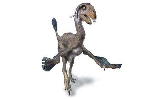 dinosaure Kuebek