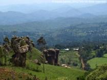 Vall dels voltants de Bamenda
