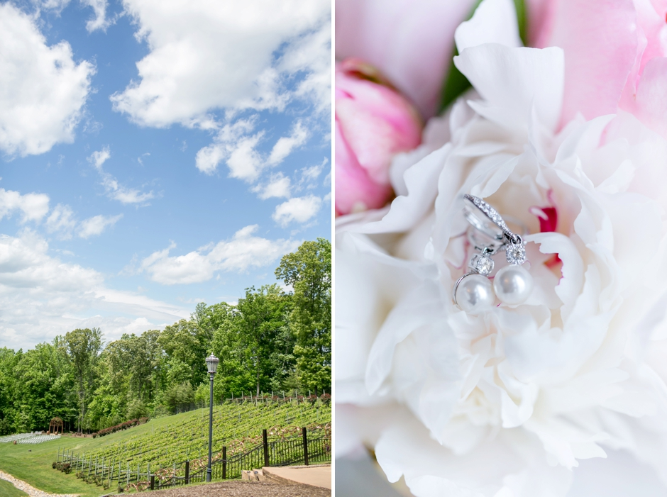 15A-Potomac-Point-Winery-Wedding-Claire-Ryan-1015
