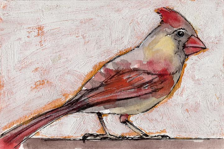 Bird Flashcard: Female Redbird