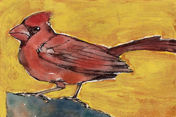 Redbird & Gold