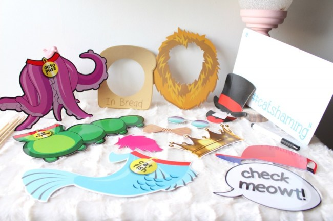 Cadeaux_folies_accessoires_chat