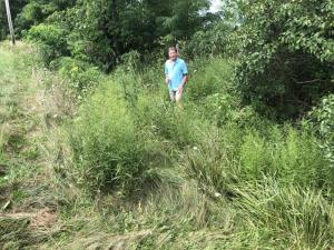 I went back a couple of days later and stood where I landed. You could still see the imprint of my body in the weeds.