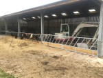 Cattle Feed Barrier with Wooden Baseboards