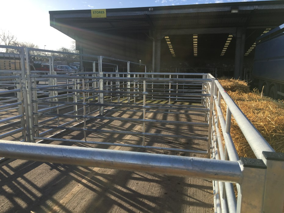 Empty Livestock Lairage Pens Completed