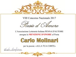 Menzione d'onore 2017
