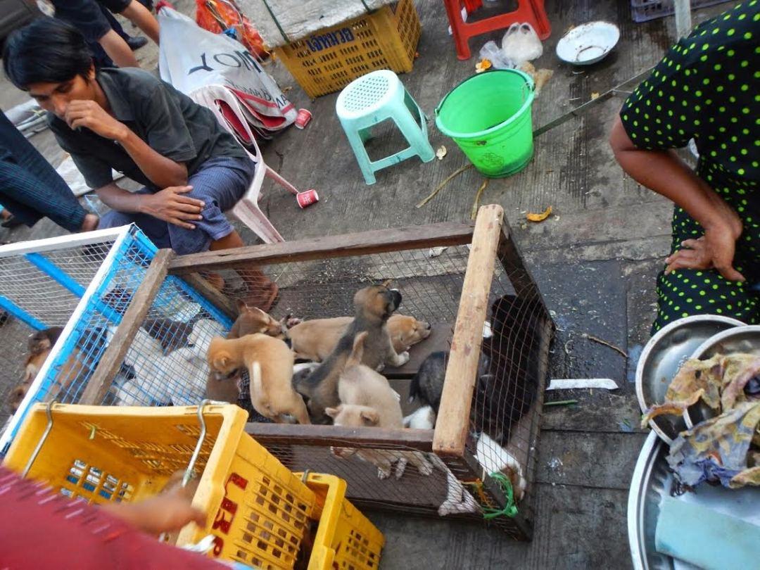 Mercadp de Yangón